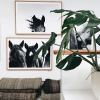framed-pampa-horse-mix