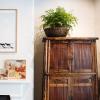 bamboo-cupboard-fern